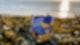 Blank & Jones feat. Zoe Durrant - Erase / Rewind (Official Video)